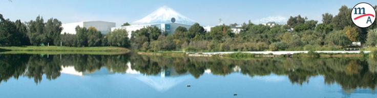 Volkswagen de México y sus acciones en pro del medio ambiente