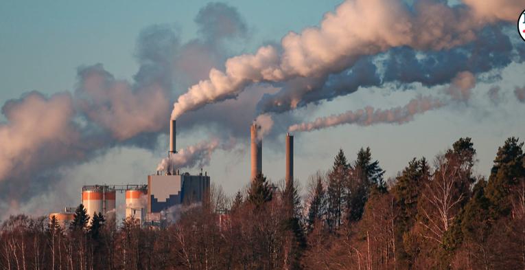 Dos terceras partes de las empresas de mayores emisiones han fijado un objetivo cero